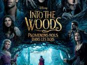 Critique: Into Woods