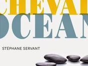 Cheval océan Stéphane Servant