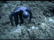 Ocean Gravity Films Engloutis