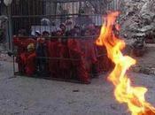 Daech brûle enfants
