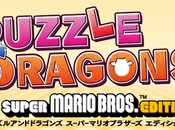 Puzzle Dragons: Super Mario Bros: Détail