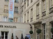Fermeture sine Musée Maillol