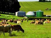 L'Ademe souligne potentiel l'agriculture