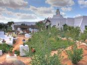 Cinq bonnes raisons d'aller passer vacances Djerba
