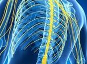 SCLÉROSE plaques: thérapie prometteuse cellules souches JAMA
