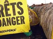 TraficBois action ministère matin mars, 7h30, activistes Greenpeace déposé grume bois tropical devant l'Écologie