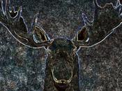 News: moose head over mantel besoin vous