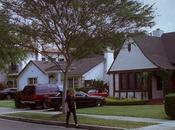 Palmbomen Cindy Savalas (PREMIERE)
