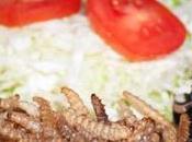 insectes s'invitent dans assiettes