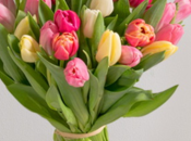 Bouquets printemps Interflora