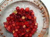 Panna cotta fraises bois
