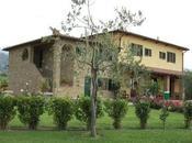 vigne douce... sous soleil Toscane...