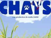 Film Royaume Chats (2002 Japon)