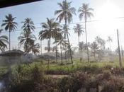 Lanka, premières impressions