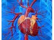 Insuffisance CARDIAQUE, digoxine associée décès prématuré European Heart Journal