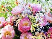 pivoines France Hollande sont très belles fleurs saison
