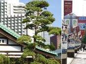 Première étape: Tokyo (Part Akihabara, Palais imperial, Ginza, Shibuya, Odaiba, Roppongi)