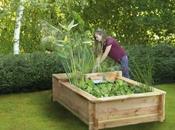vous installiez petit jardin aquatique votre terrasse