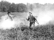 pesticide d'hier, cancer d'aujourd'hui
