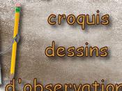 Carnet voyageur croquis dessins d'observations