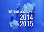 Vidéo Jour 2014-2015 bilan