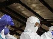 Attentats Paris inquiète l'hôpital Necker