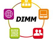 Logo méthode mesure maturité digitale DIMM