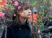 Marché fleurs pour fêtes Vietnam