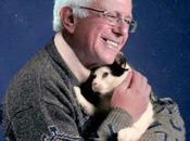 présidentielle américaine mèmes Bernie Sanders