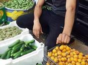 pauvreté n'est obstacle: photo d'un étudiant pharmacie vend légumes pour répondre besoins