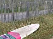 surf, learn