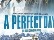 Critique Dvd: perfect