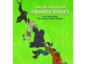 Wicks Maris Ottaviani Traces Grands Singes avec Jane Goodall, Dian Fossey Birute Galdikas