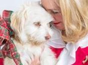 histoires Noël chien