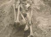 peste frappait déjà l'âge Bronze