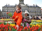 Samedi, journée tulipe Amsterdam