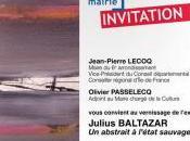 Mairie PARIS Exposition Julius BALTAZAR abstrait l'état sauvage Vendredi Février 2017