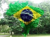 Tout savoir création brésil