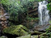 Visiter l'Amazonie Équateur