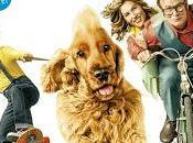 Boule Bill film chien...