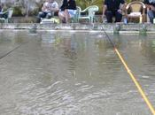 pêche crevette