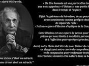 Leçons d'Albert Einstein
