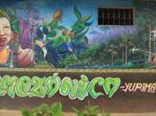 Arts urbains Amazonie, forêt possibles