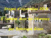 Stage dans Cévennes Dominique Gioan