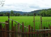 meilleur Laos