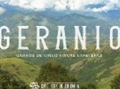 Géranio, café colombien qu'on aime bien.
