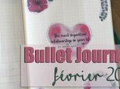 Bullet Journal Février 2018