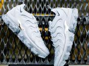 Nike Vapormax Plus Wolf Grey