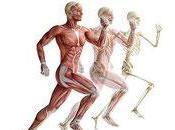 Reprendre sport sereinement Conseils simples intérêts l'Ostéopathie