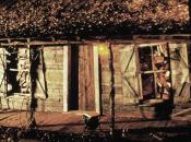 [Dossier] films d'horreur déroulent dans bois voir absolument
